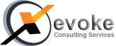 Xevoke Consulting Services