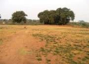 Plot for sale in Khatu Shyam ji